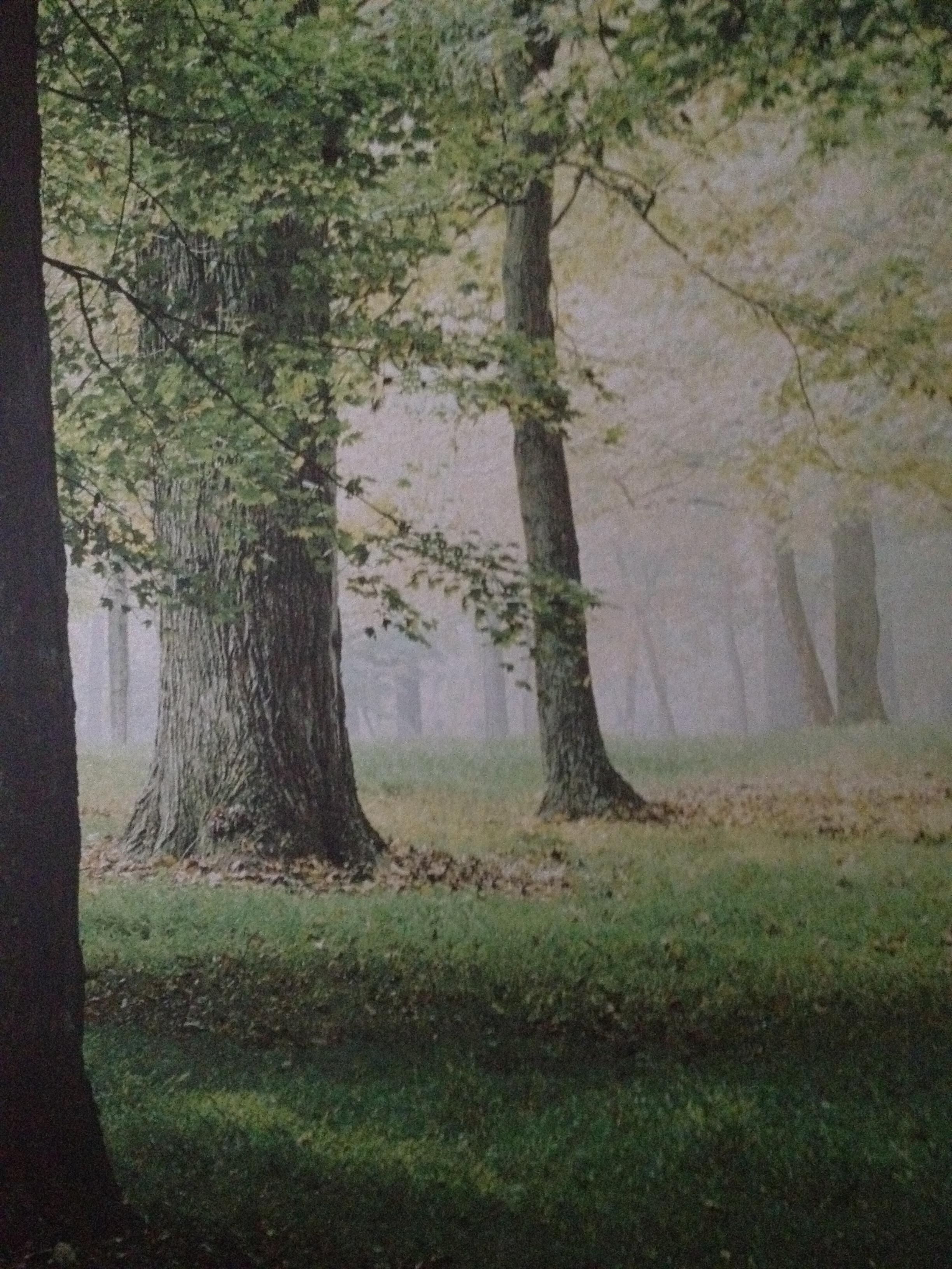 """""""Lugna rummet"""" Här kan patienterna få noga utvalda upplevelser i form av musik, doft, bolltäcke med mera samtdigit som man kan njuta av utsikten mot en vacker skog. Tydligt effektivt sätt att finna lugnet."""