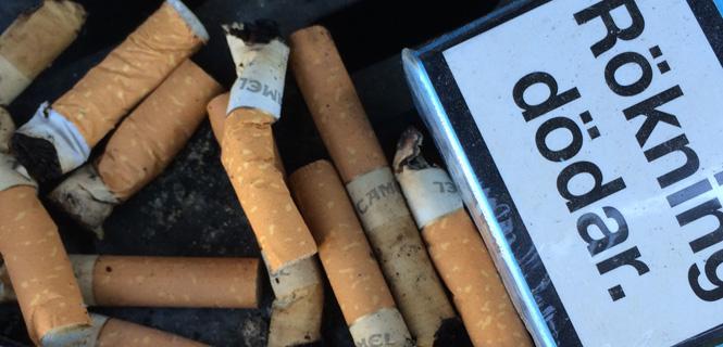 Rökning stort hälsohot som kan hindras