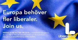 Brexit – Vårt EU skakas i en orolig tid
